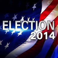 Election 2014: Fraud and Crime